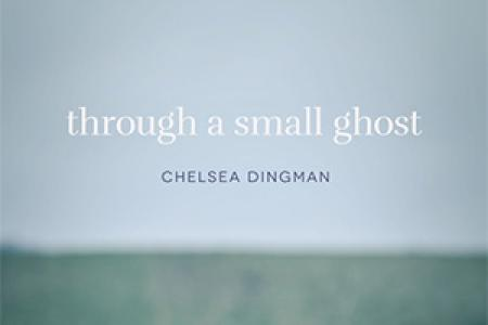 Through a Small Ghost by Chelsea Dingman